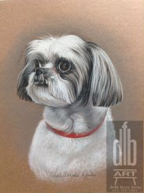 Dog done in charcoal pencils